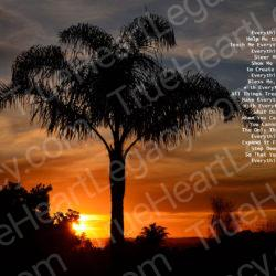 Palm-Tree-Sunset-signed-Everything-Heart-Poem18r