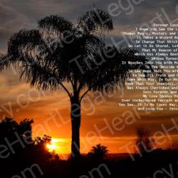 Palm-Tree-Sunset-signed-Forever-Love-Poem19s