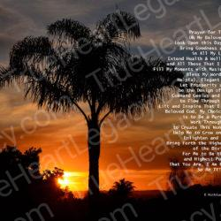 Palm-Tree-Sunset-signed-Prayer-For-Today