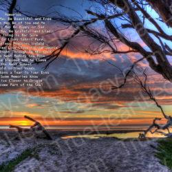 Wishing-Branch-Sunset-signed3-Memories-Poem