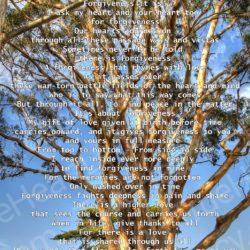 Tree-to-the-Heavens-with-Peace-in-the-Matter-poem
